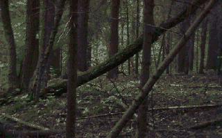 screenshot added by Sverker on 2006-02-25 13:15:30