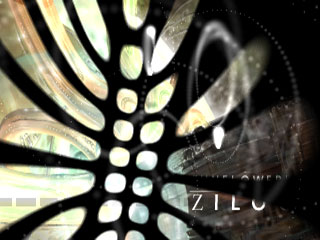 Download Sunflower - Zilog (Win32) as Xvid/MP3